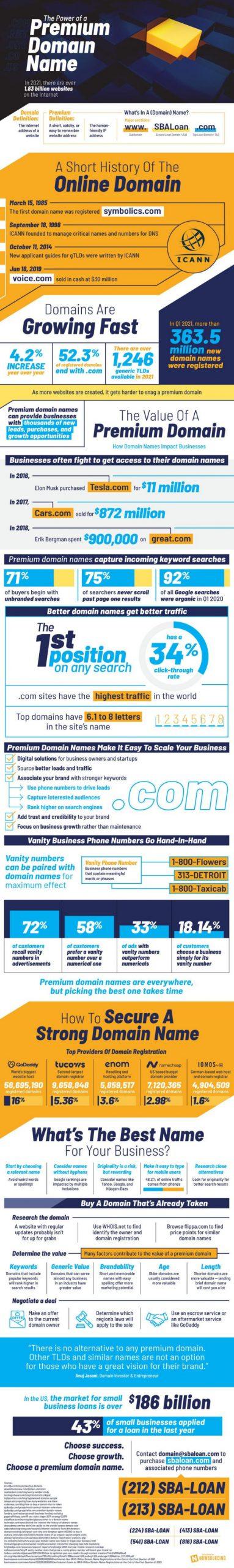Premium Domain Infographic